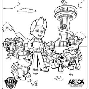 skye paw patrol coloring pages - pawpatrolcoloringpages