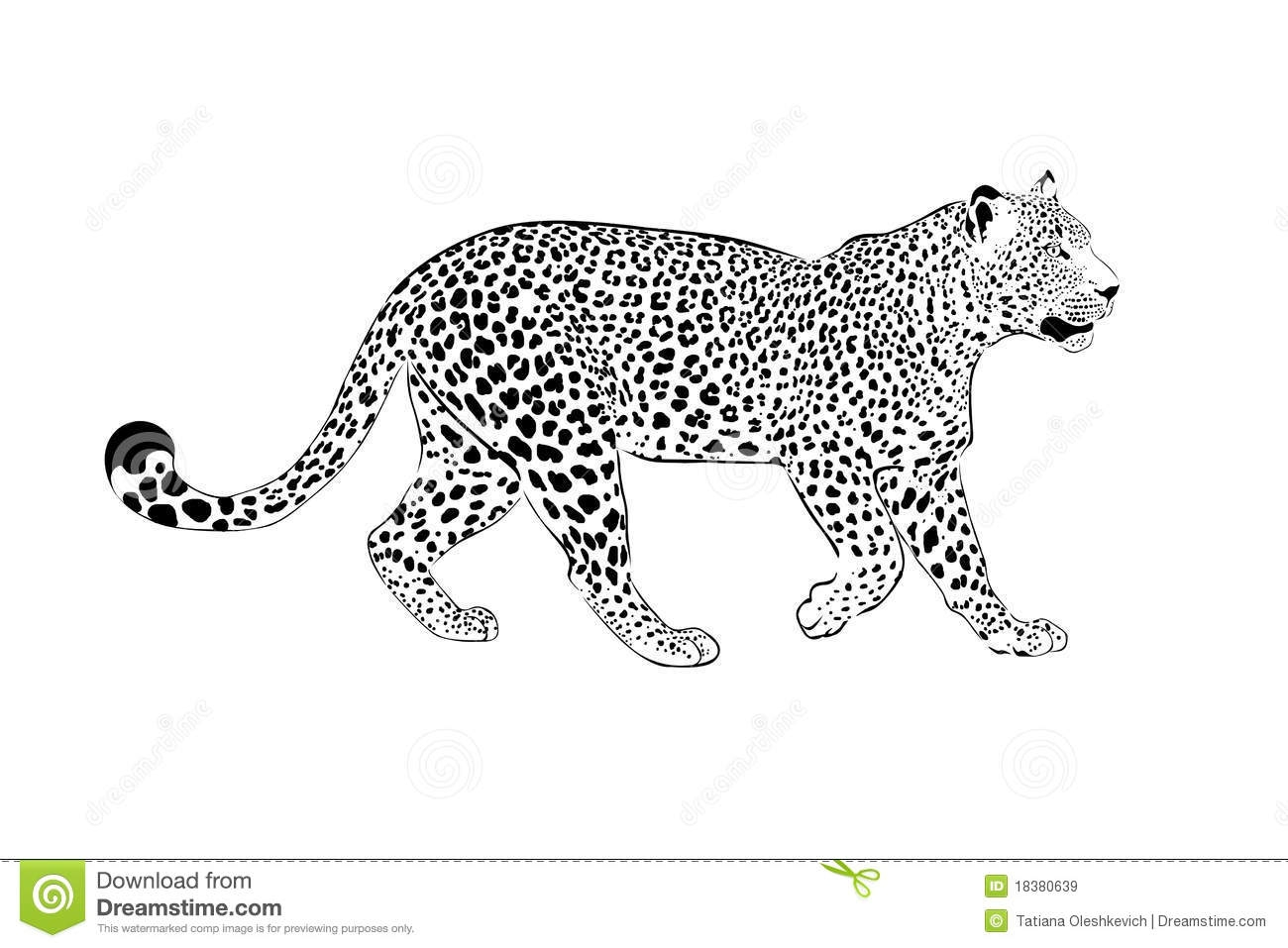 Dibujos Leopardo Para Colorear E Imprimir: 28 Snow Leopard Coloring Pages Pictures
