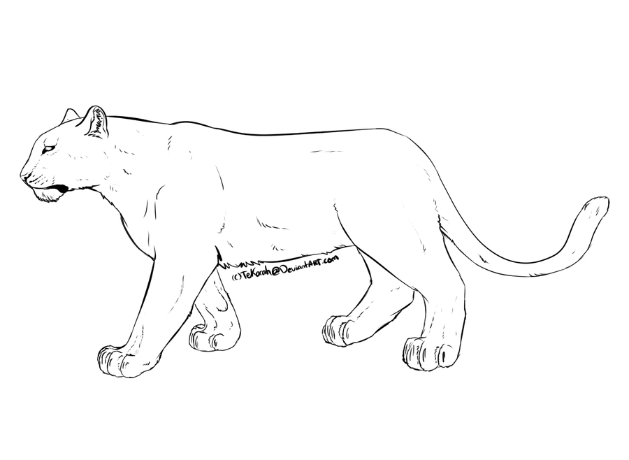 28 Snow Leopard Coloring Pages Pictures Free Coloring Pages
