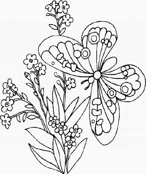 sophia coloring page - coloriages2