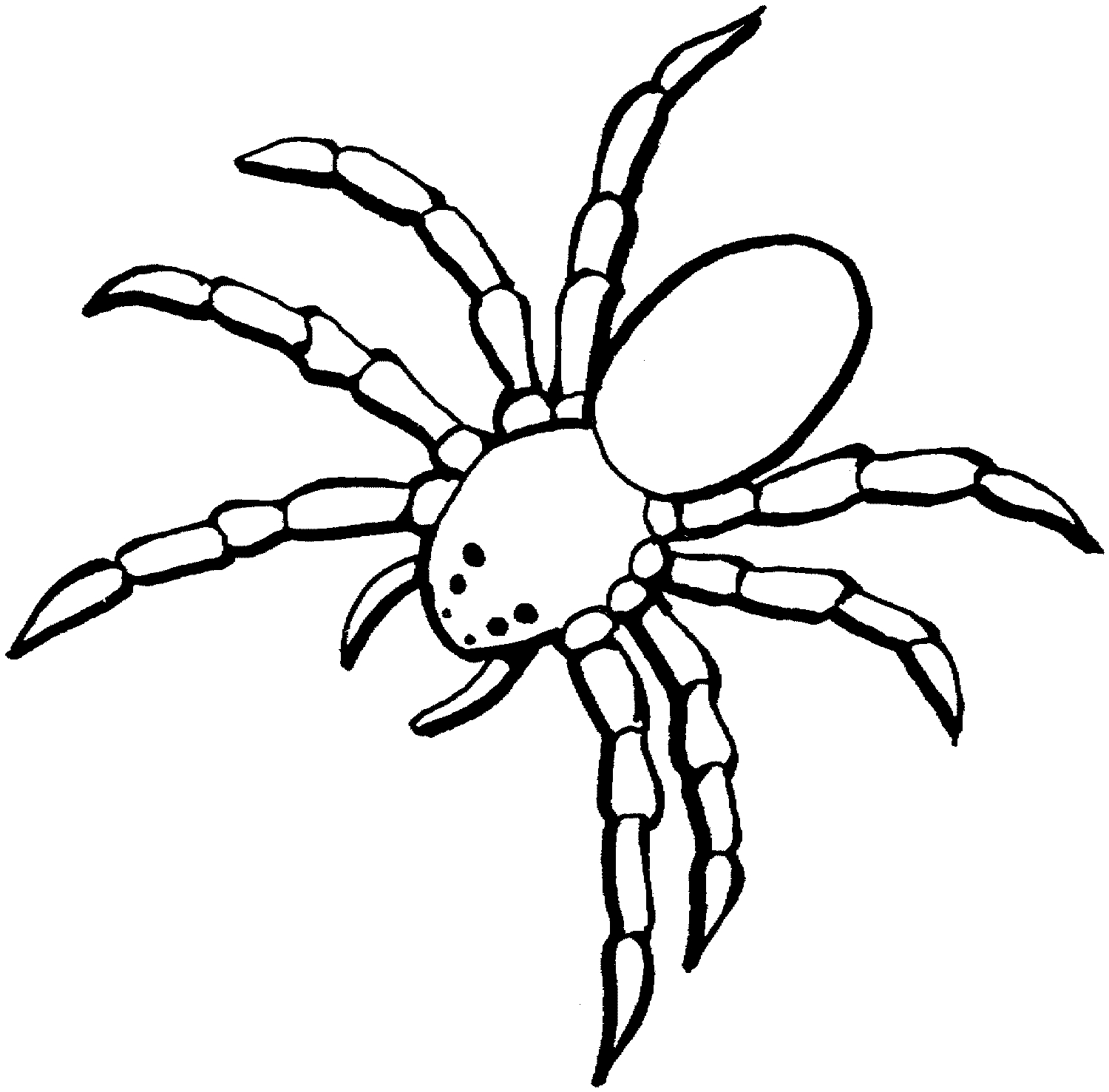 spider coloring pages - spider coloring pages