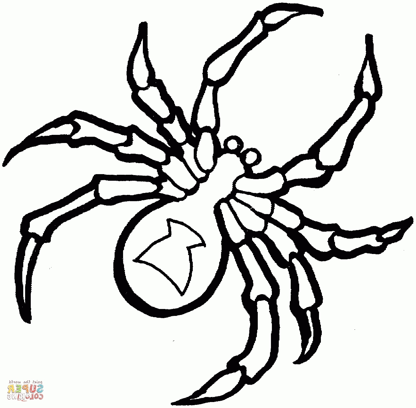 spider coloring pages - itsy bitsy spider coloring page