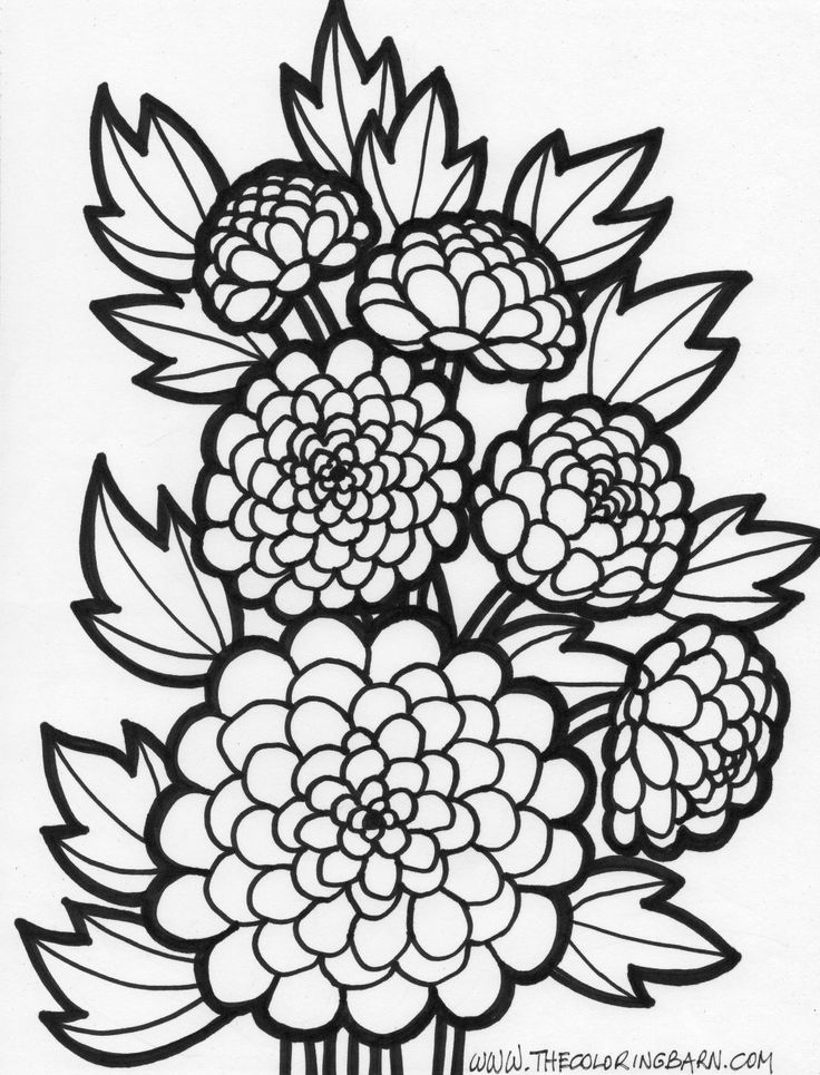 spring adult coloring pages - ideas from coloring pages