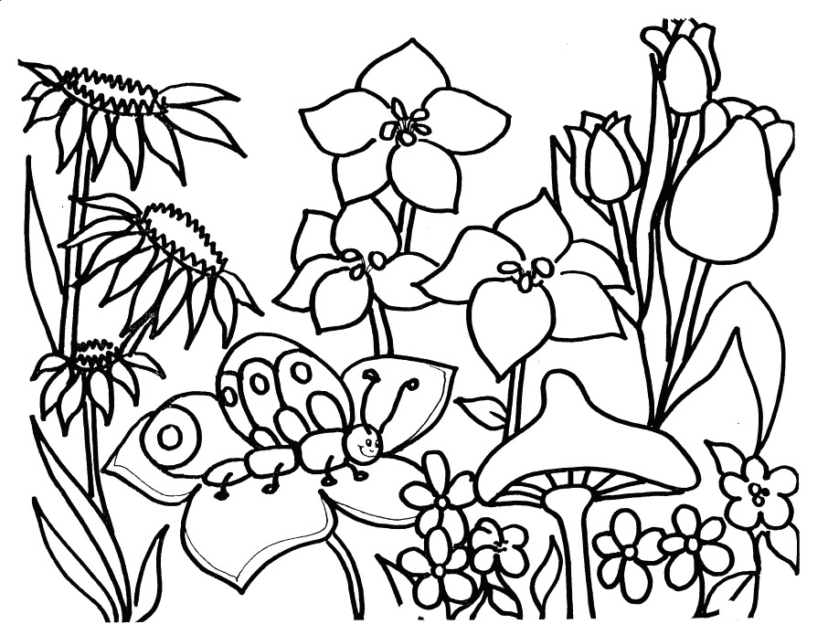 Spring Coloring Pages - Saison Printemps 23 Nature – Coloriages à Imprimer