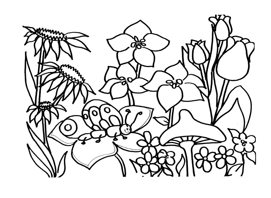 spring coloring pages to print - spring coloring pages to print