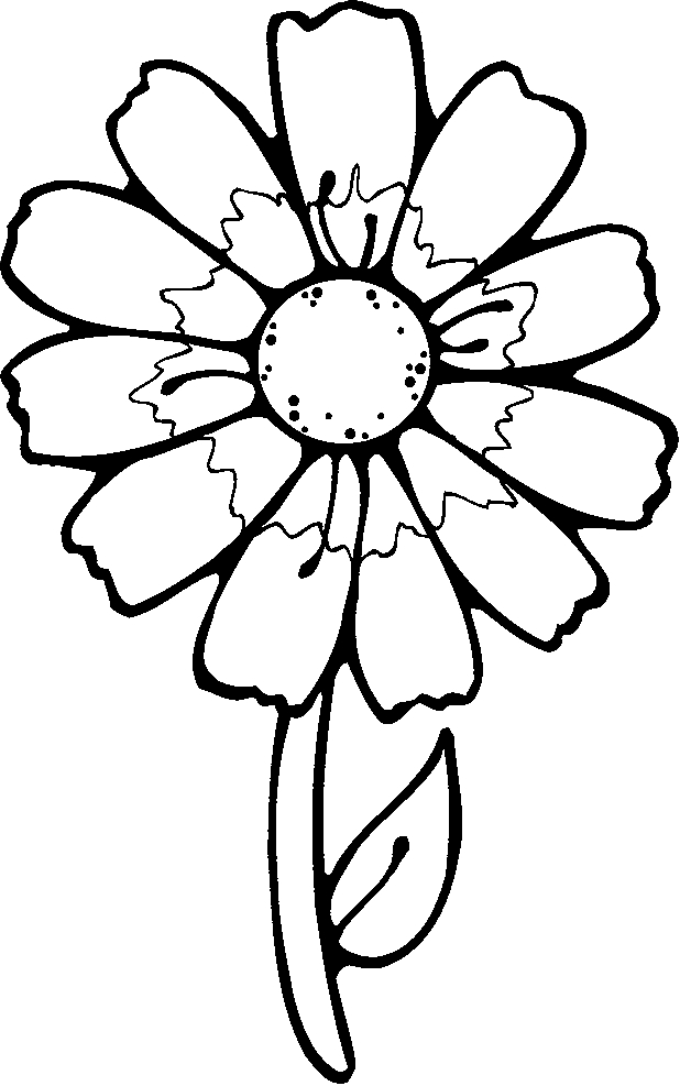 Spring Flowers Coloring Pages   Spring Flower Coloring Pages