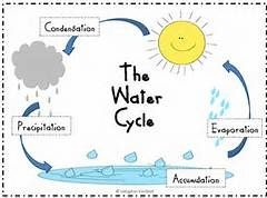 water cycle by funforester teaching resources tes
