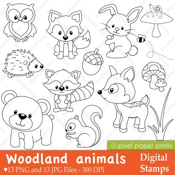 springtime coloring pages - woodland animals
