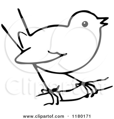 stained glass coloring pages - black and white sketched bird 5