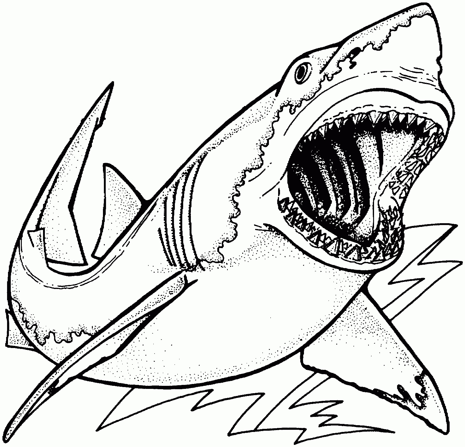 star wars coloring pages - coloring page of a shark tag hammerhead shark coloring pages to print kids coloring pages