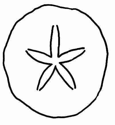 starfish coloring page - exclusive sand dollars