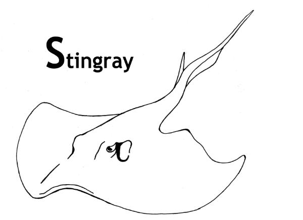 stingray coloring page - sea animal stingray coloring pages for