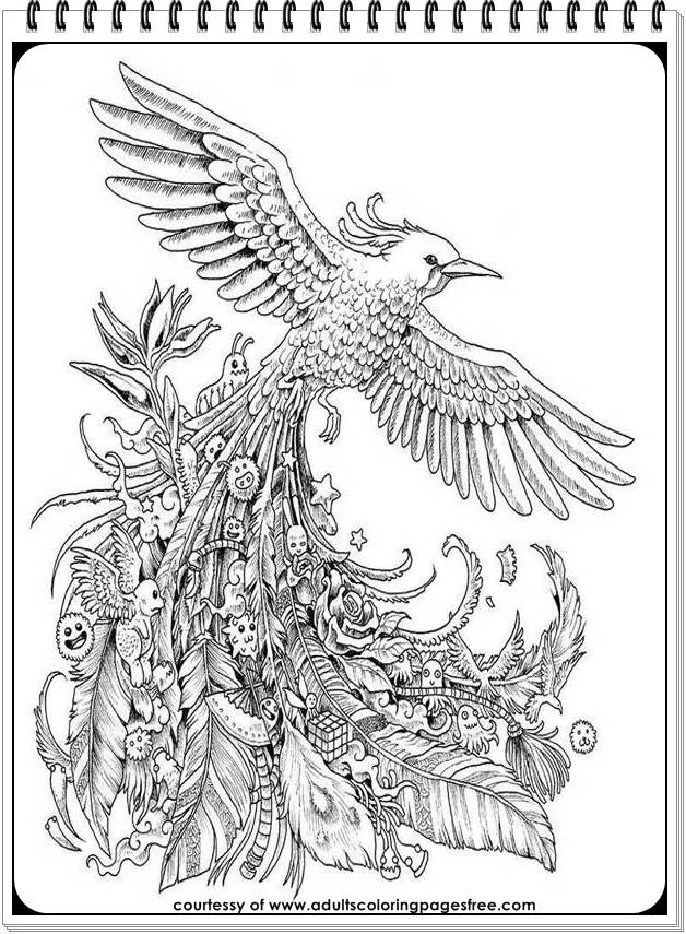 stress relief coloring pages - coloring pages printable peacocks stress relief sketch templates