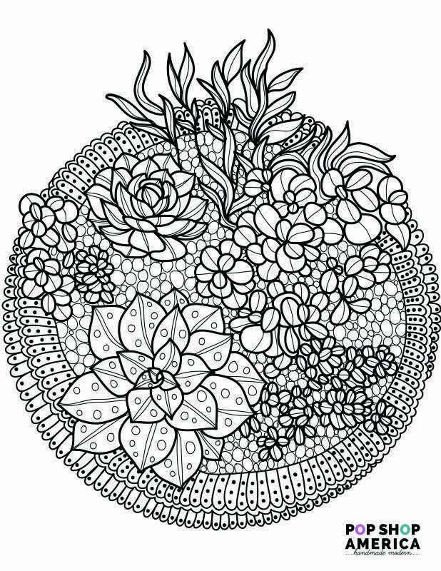 succulent coloring page - craft cacti succulent