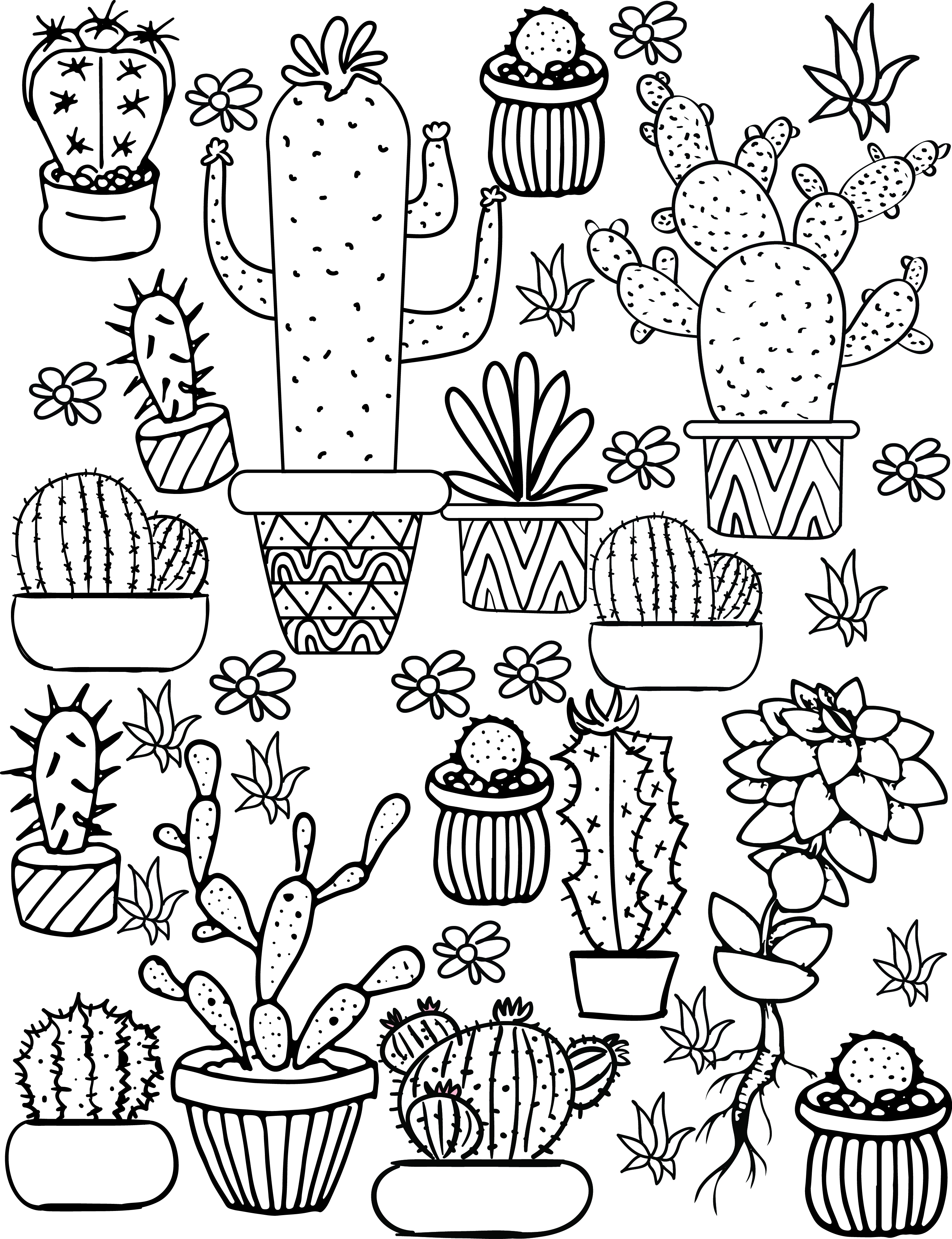 succulent coloring page - cactus and succulent printable adult coloring pages