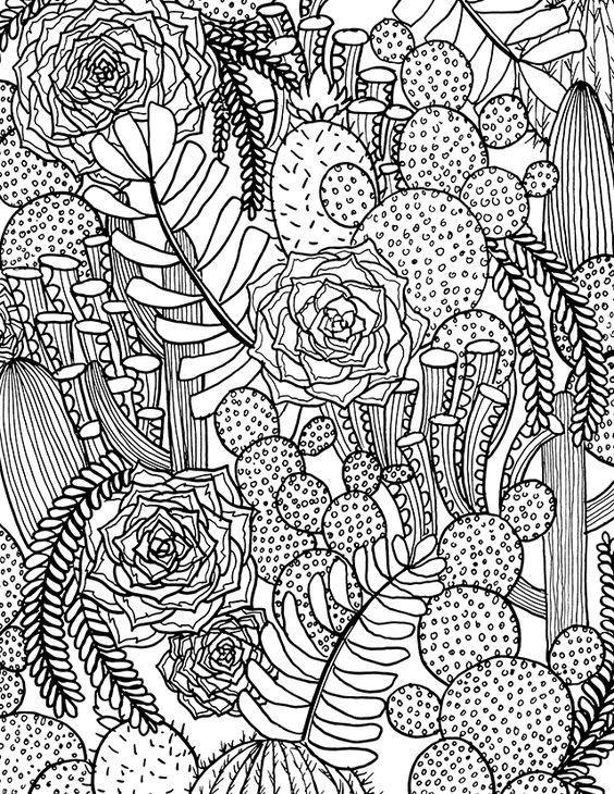 Succulent Coloring Page - Free Succulent Coloring Page From Alisaburke