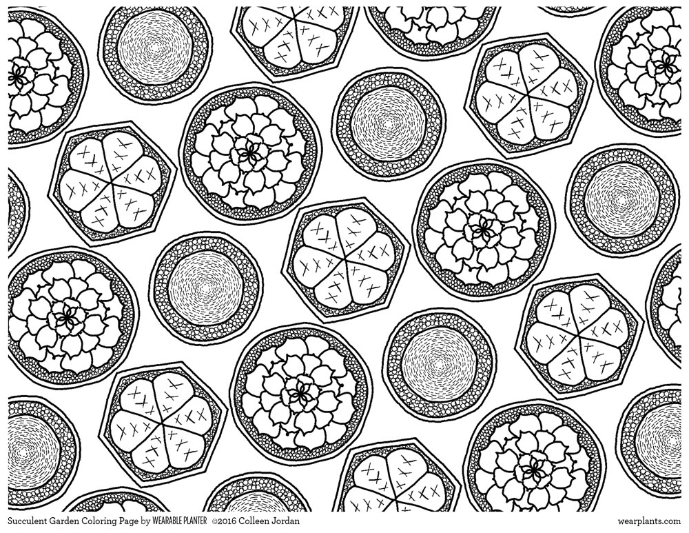 succulent coloring page - garden coloring page