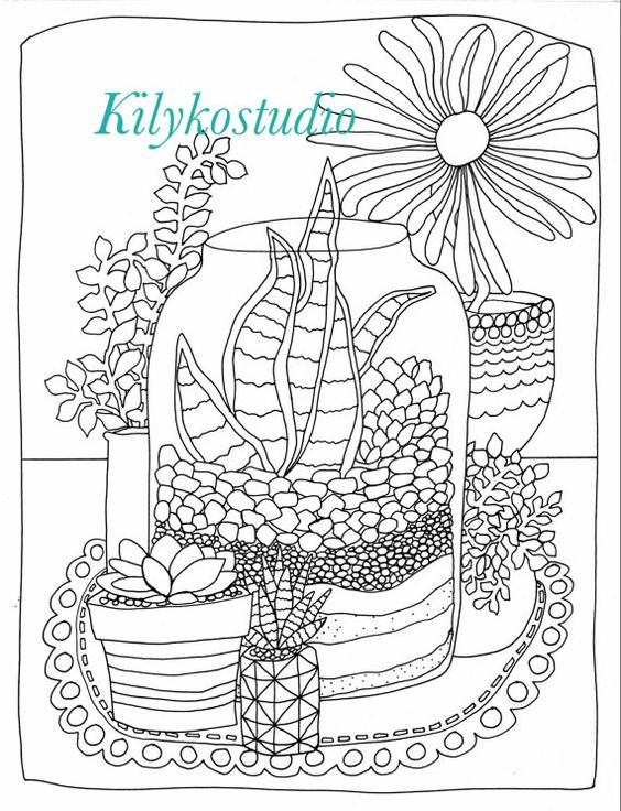 succulent coloring page -