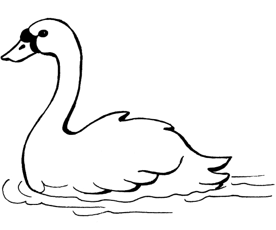 swan coloring pages - swan