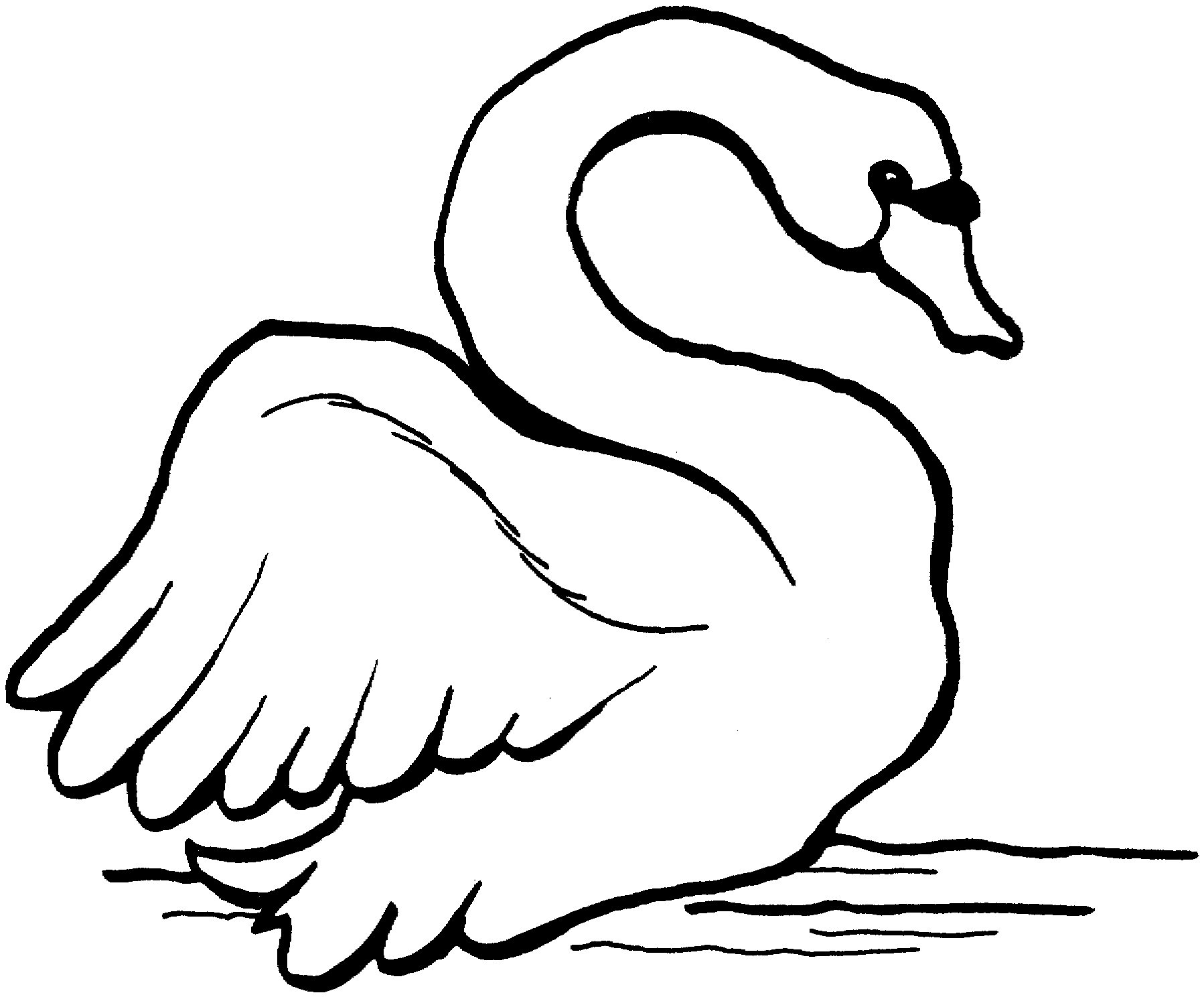 swan coloring pages - swan coloring pages