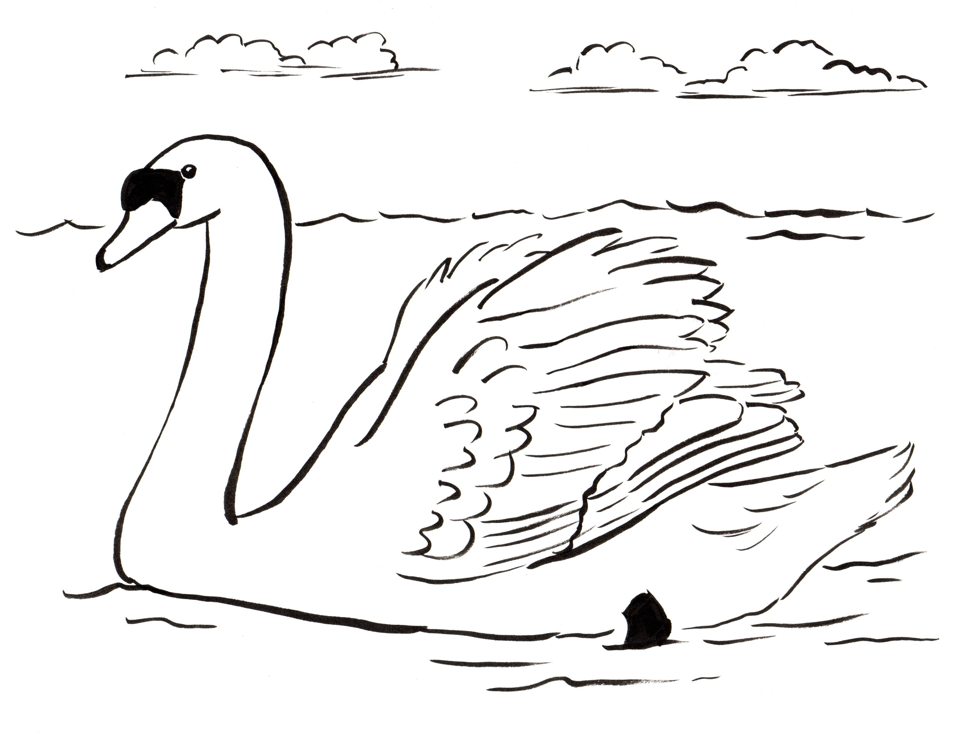 swan coloring pages - swan coloring page