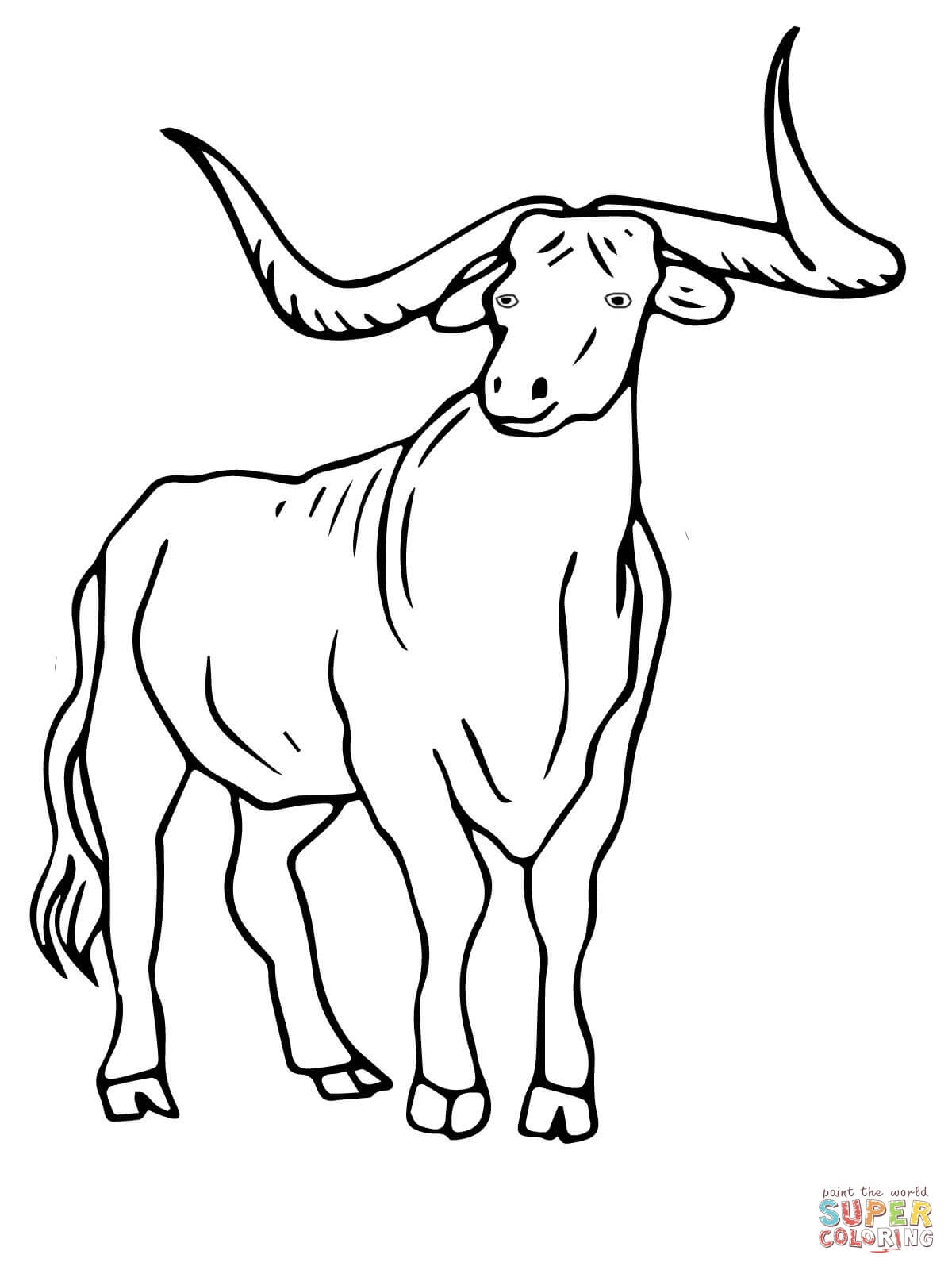 Texas Coloring Pages - Texas Longhorn Coloring Line