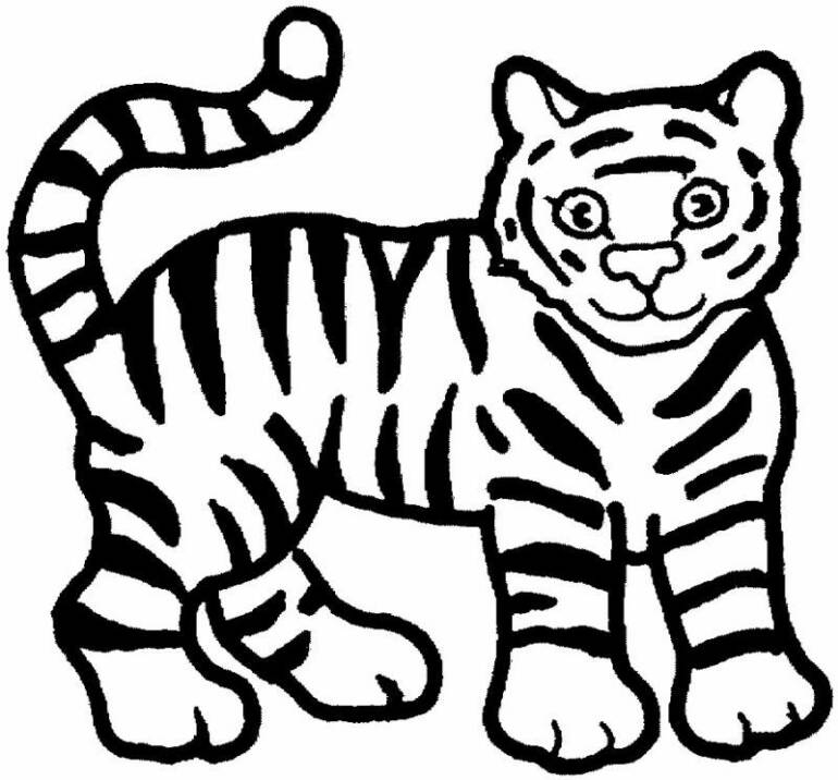 tiger coloring pages - free printable animal tiger coloring