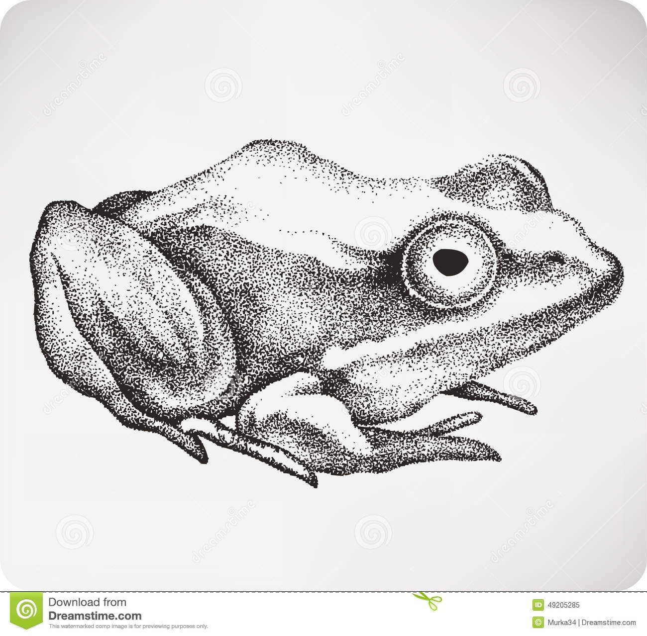 toad coloring pages - illustration stock crapaud animal main dessin illustration de vecteur image