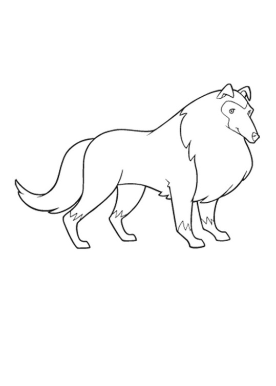tom and jerry coloring pages - horseland 27