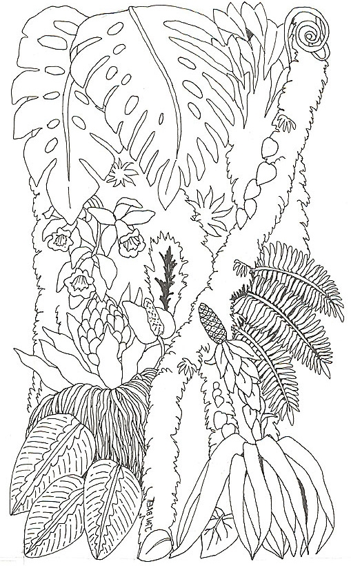 toucan coloring page - umbrella mural tree trunk 2