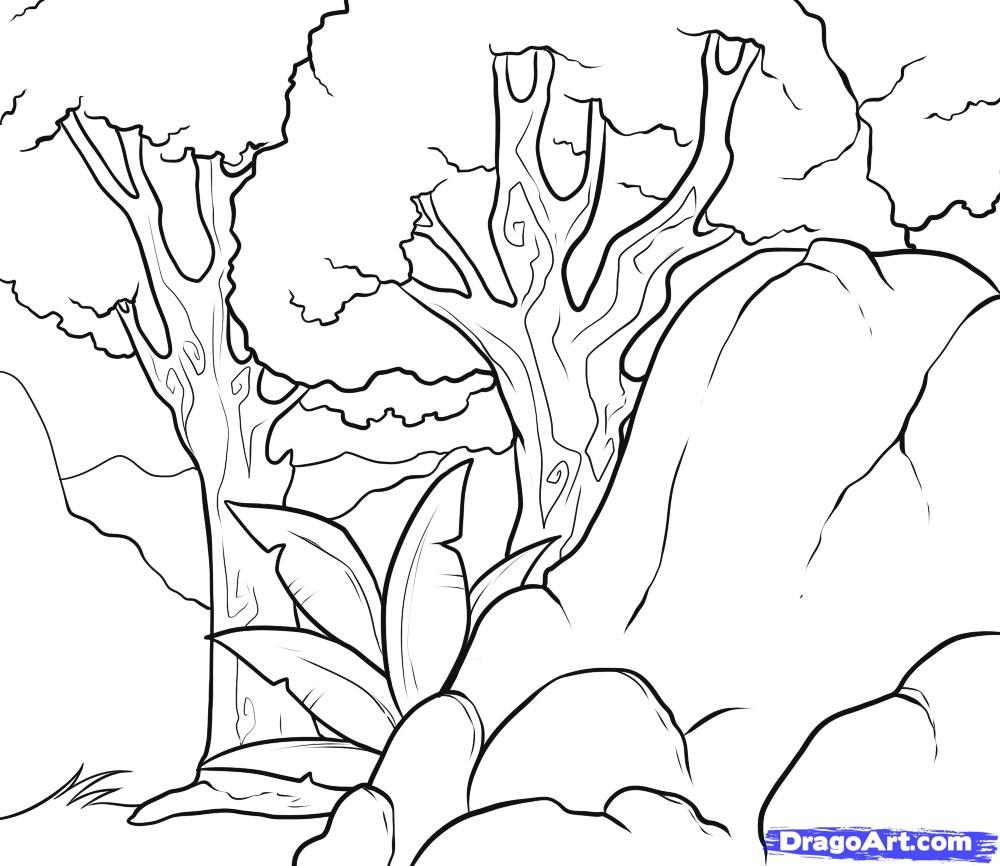tree coloring pages - how to draw a background