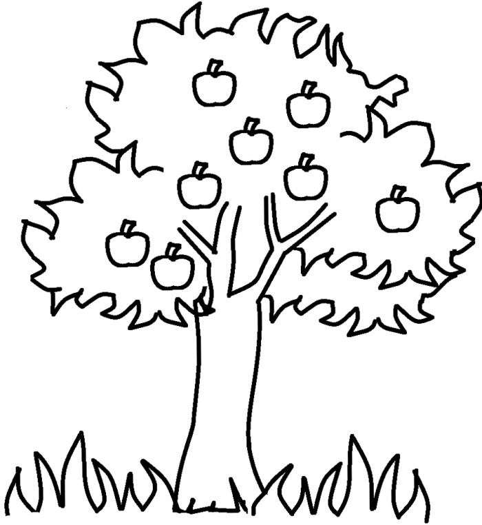 Tree Coloring Pages - Picture Apple Tree Cliparts