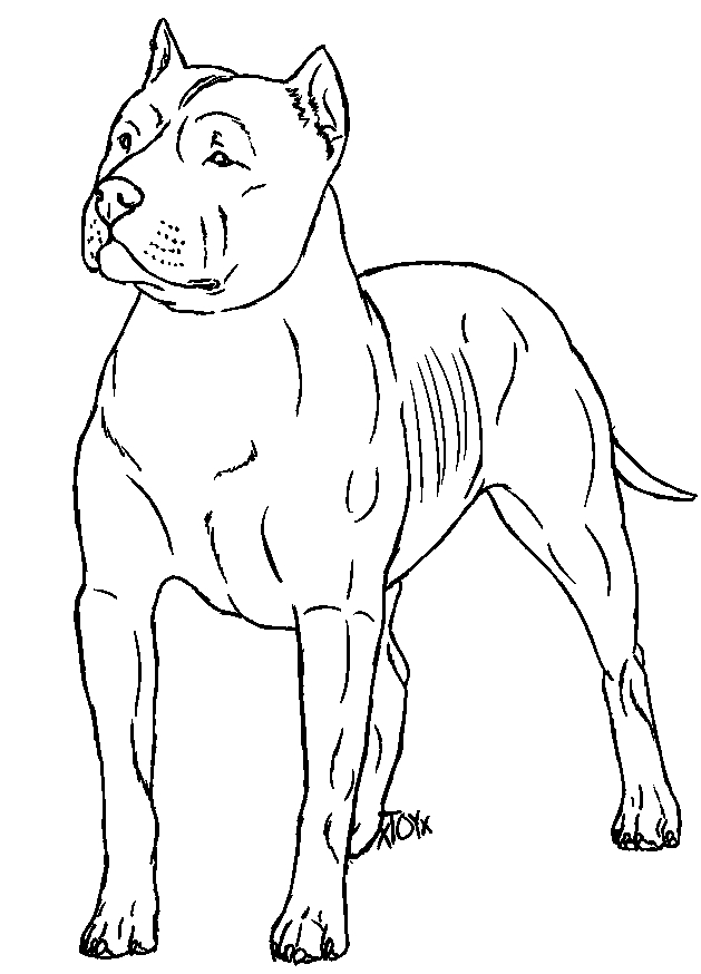 tree of life coloring pages - Free Pitbull Lines