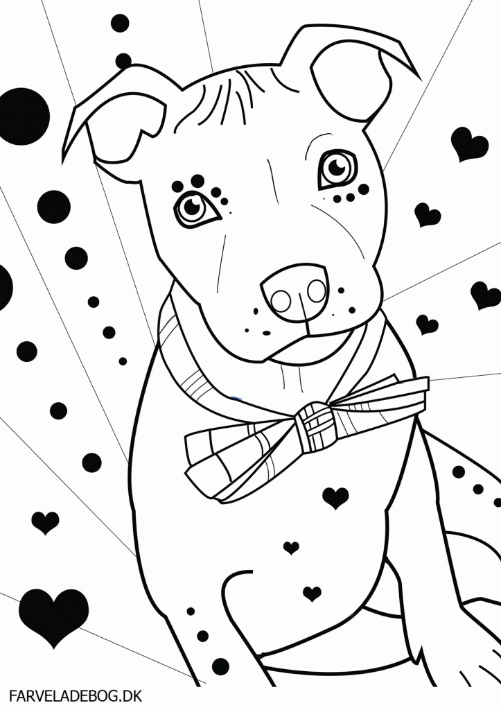 trolls printable coloring pages - pitbull puppies coloring pages