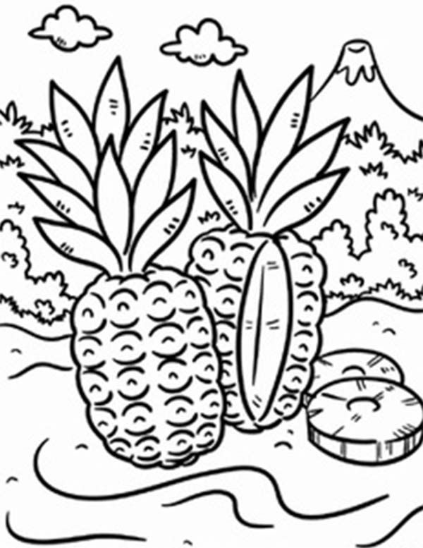 tropical coloring pages - online for kid tropical coloring pages 12 about remodel coloring print with tropical coloring pages