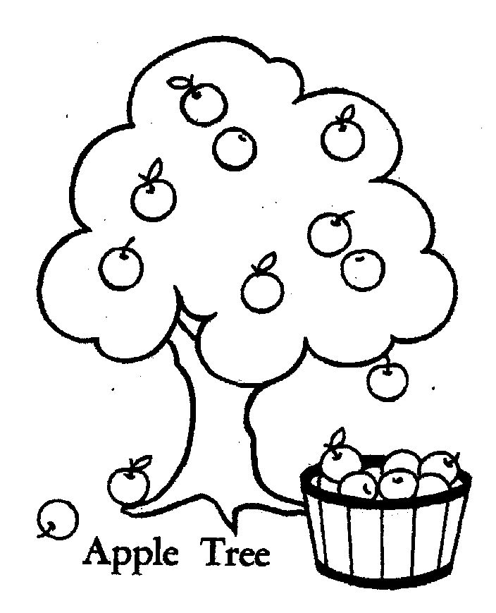 turkey coloring pages free - apple tree pictures to color