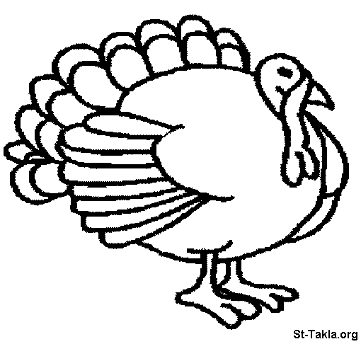 turkey coloring pages free - Coloring 063 Peacock