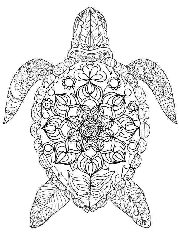 turtle coloring pages for adults - sea turtle crafts