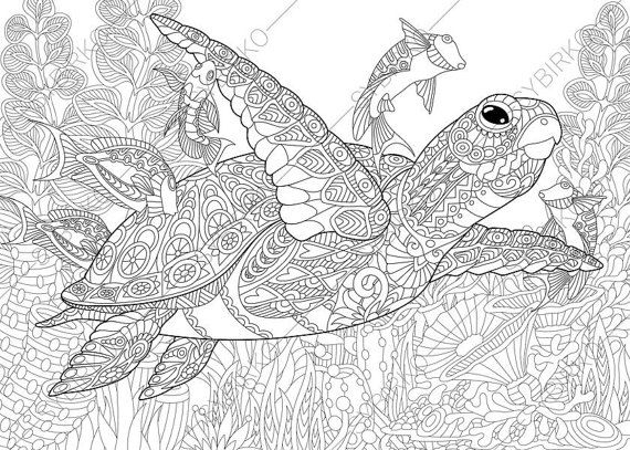 turtle coloring pages for adults -