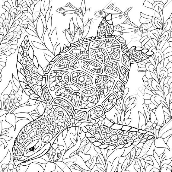 turtle coloring pages for adults - turtle adult coloring page zentangle