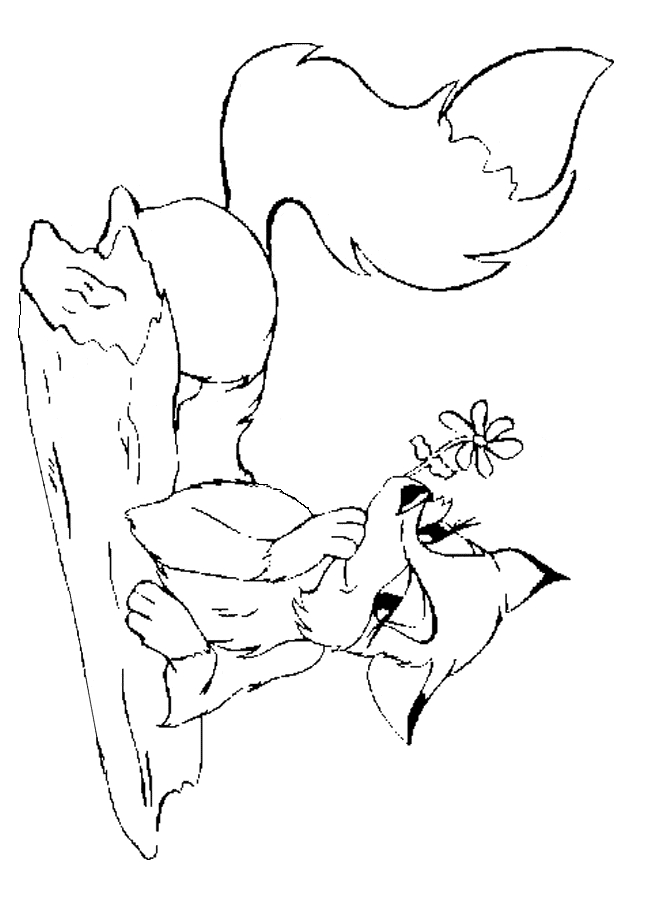 valentine coloring pages for adults - fox coloring 05