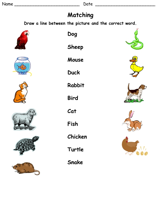 Vegetable Coloring Pages - Matching Pets to their Names