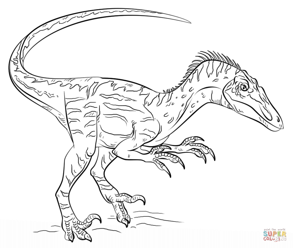 27 Velociraptor Coloring Pages Selection | FREE COLORING PAGES