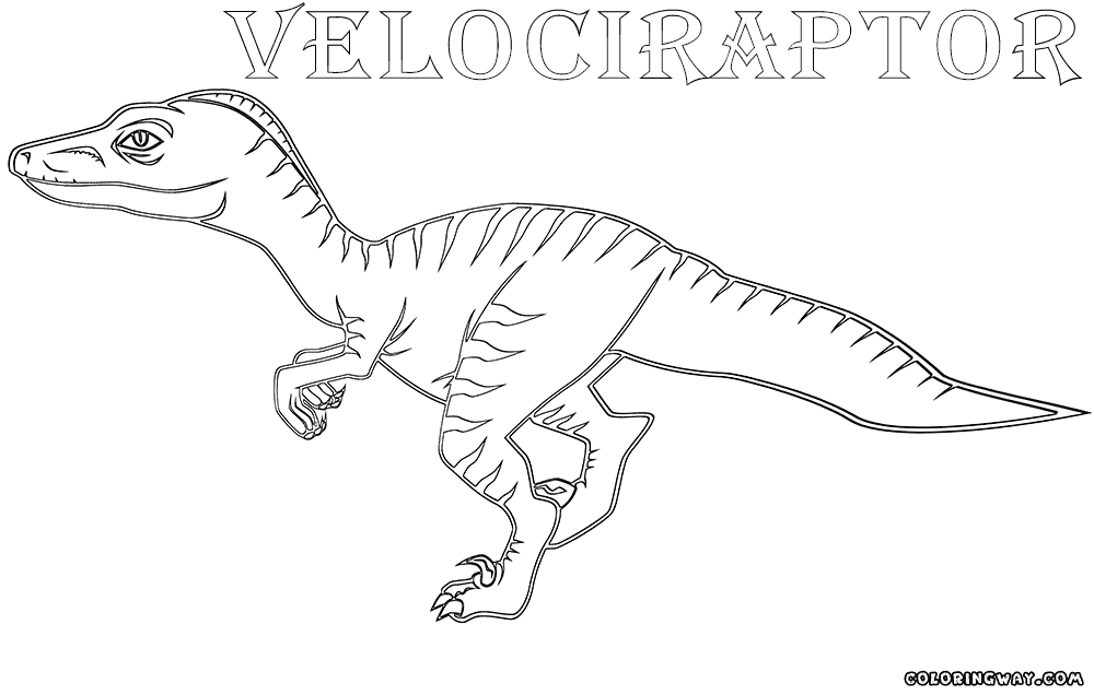 27 Velociraptor Coloring Pages Selection | FREE COLORING PAGES - Part 2