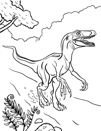 velociraptor coloring pages - velociraptor coloring pages