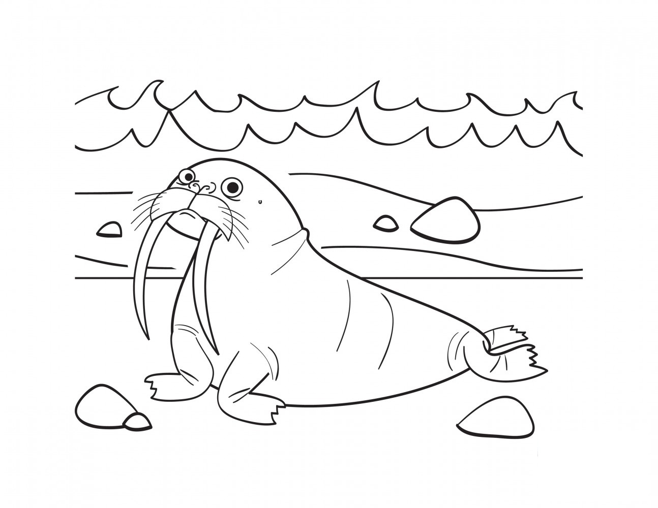 walrus coloring page - walrus coloring pages