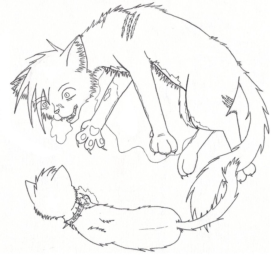 warrior cat coloring pages - warriors cats coloring pages