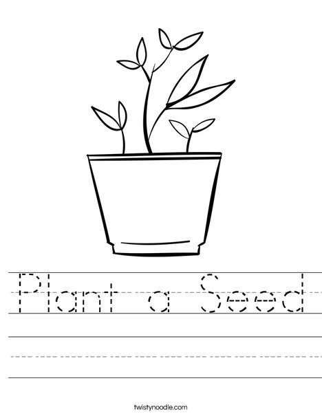 water cycle coloring page - plant a seed worksheet