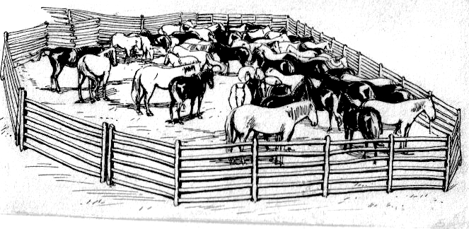 western coloring pages - File Corral PSF