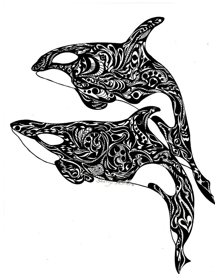 whale shark coloring page - orca dance sherry shipley